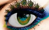 艺术界眼睛也是画布