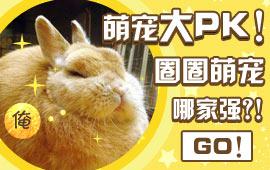 【圈币活动】萌宠大PK!圈圈萌宠哪家强?!