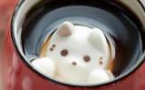 萌萌哒小猫甜品,不戳别后会!