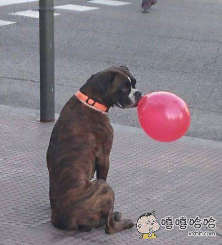 跟气球的一次亲密接触~