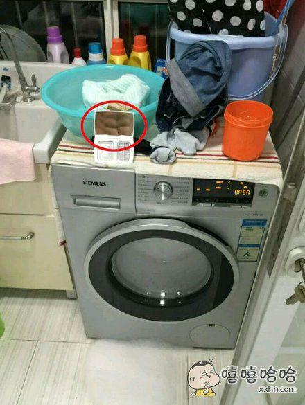 家里洗衣机突然不转了,大家帮忙看一下是为什么?