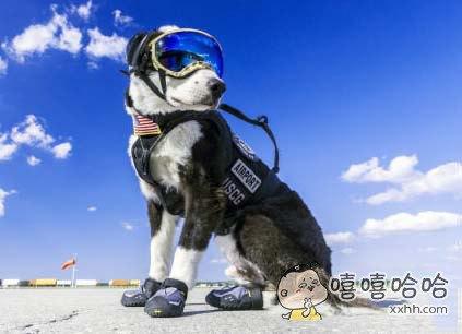 老子要去滑雪啦~