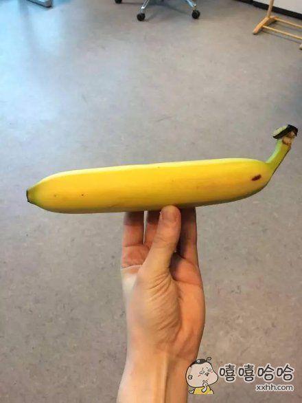 我见过最直的香蕉