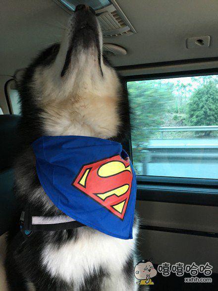 你们的superman正在路上,有谁需要我拯救吗?