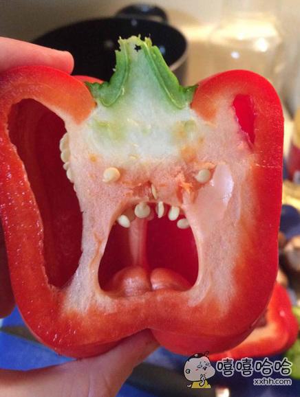 不小心切开了一颗恶魔果实