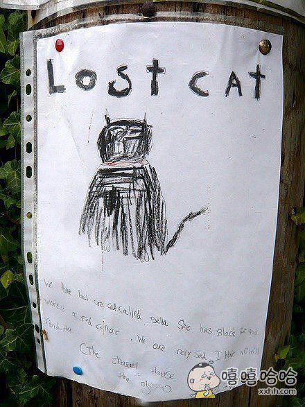 寻猫启示太抽象