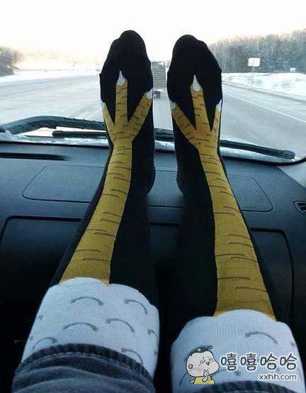 不是嫌弃自己腿粗么?这袜子怎么样?
