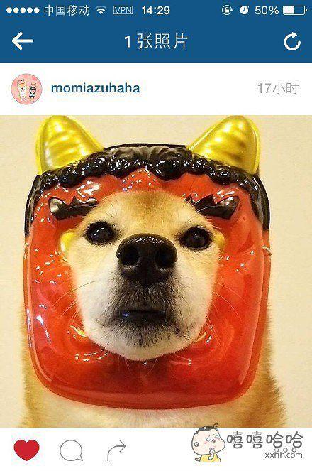 这是天狗面具么?看起来好傻