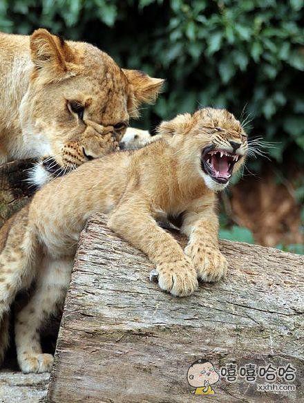 妈别搓啦!我背上皮都要搓掉啦!