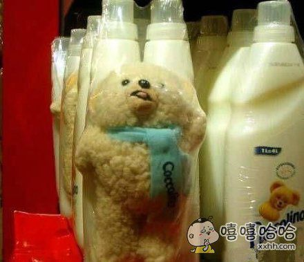 此刻熊的内心是:给我个痛快吧!