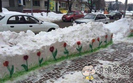 给这个冬季来点生机!