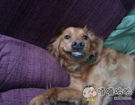 给你一个帅气的微笑