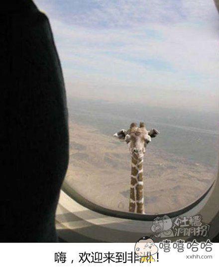 如何知道你已到达非洲上空