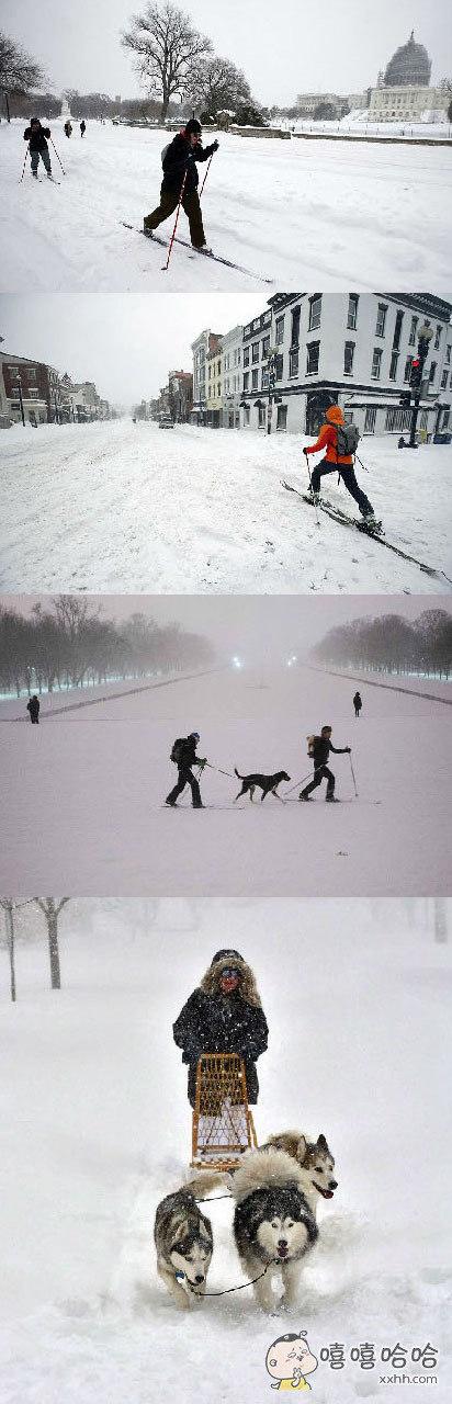 出行基本不能走,要么靠滑要么靠狗