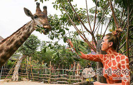 不要以为化了妆就是我们长颈鹿家族的一员了!