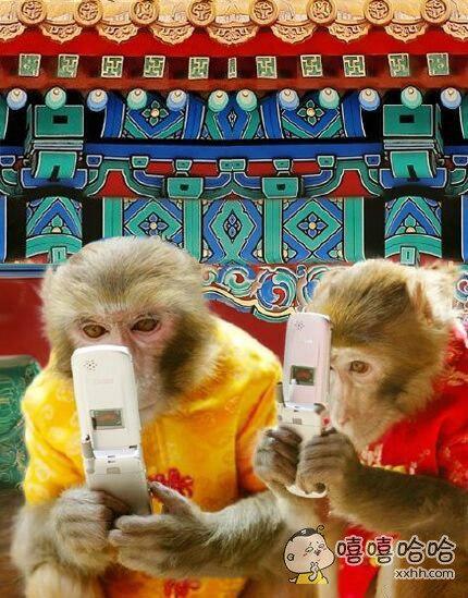 我猴哥居然用这种手机,好心酸。马上给它换新机好吗?