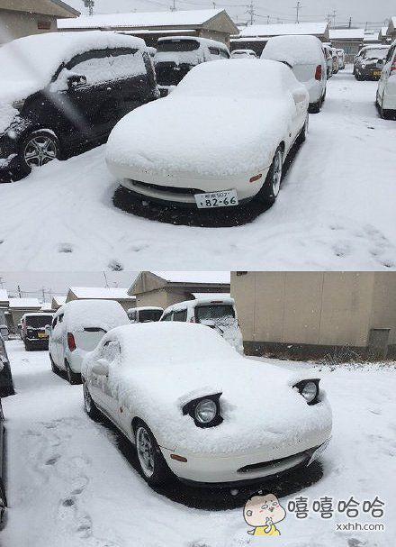 啊,刚醒来。。。全身被雪覆盖了,看来昨晚下的雪真的好大咩。。
