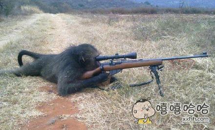猴哥好牛B
