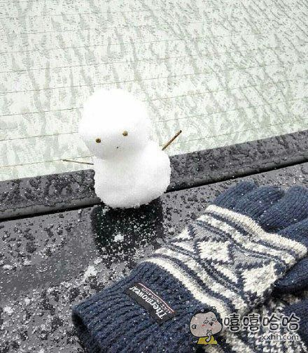 据说这是广州人堆雪人