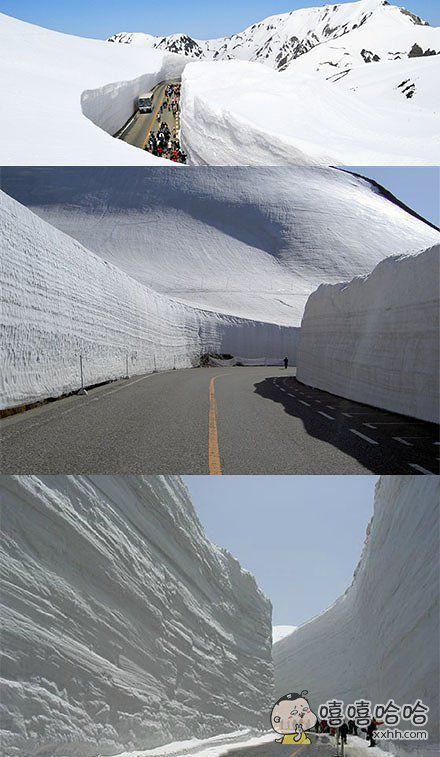 在日本立山黑部阿尔卑斯山脉路线上的大雪谷,每年春天开山后可以看到高达20米的雪墙奇观。你们随意感受下
