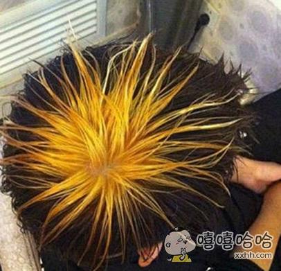 狂拽酷炫叼的菊花发型