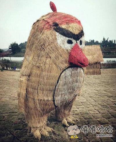奋斗的小鸟进化版