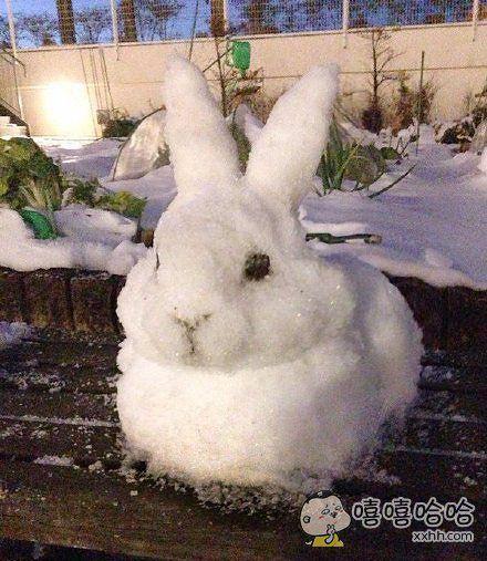 堆了一只小兔子~
