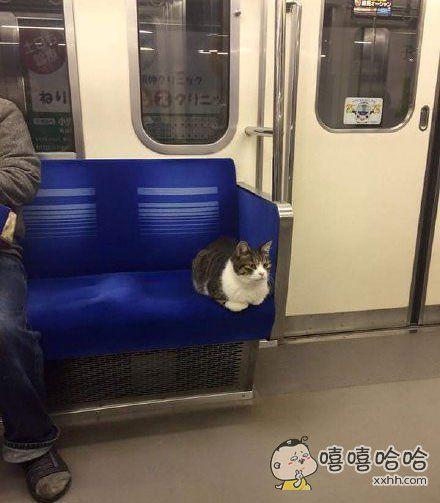 岛国一小哥从东京池袋站上地铁,这大兄弟也跟着上来,找个座舒舒服服坐下了……一看就是喝到半夜坐车回家的老不正经