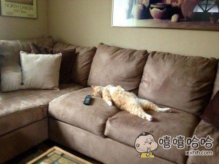 周末在家看电视的我