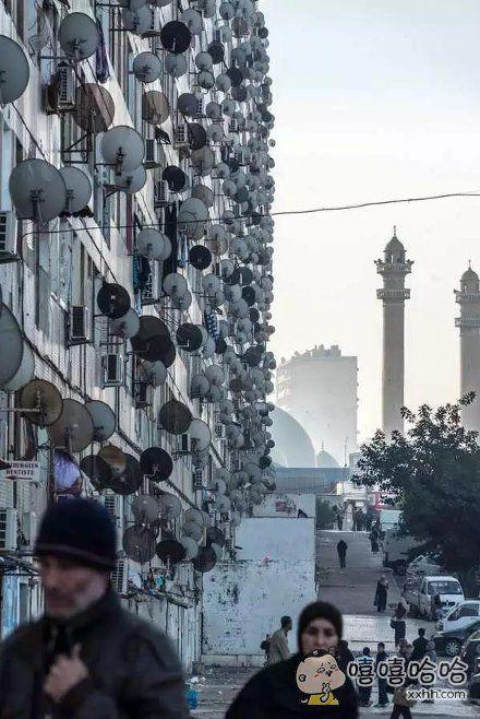 阿尔及利亚街头