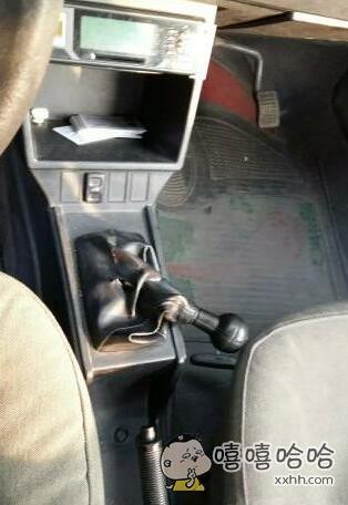 再也不让女司机开我车了!