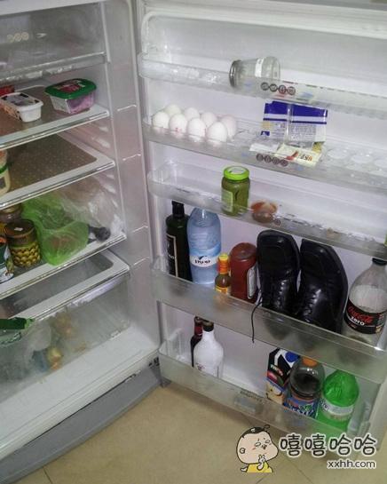 科学研究证明冰箱可以有效的去除物体上的异味