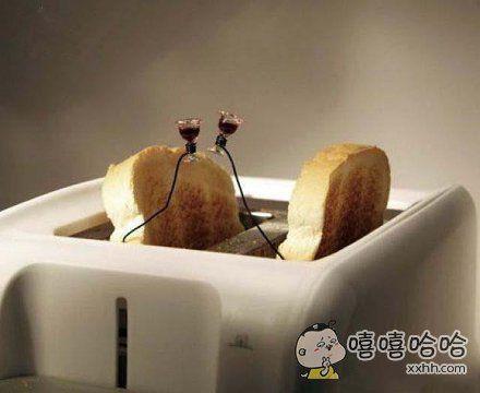 在面包机里也能这样潇洒