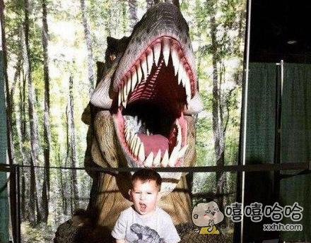 我也要做一只凶猛的鲨鱼