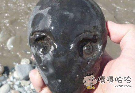 在河边捡到的一块石头