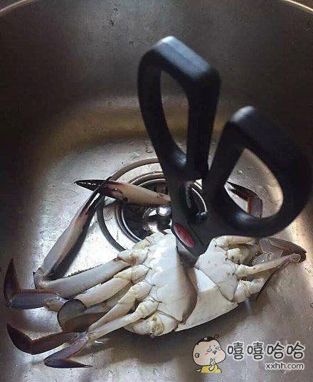 螃蟹你死的好惨啊,都是我女朋友的错。