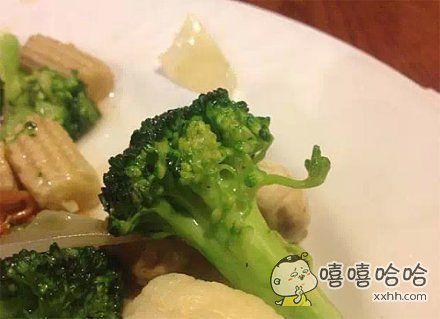 耍酷,任性的小花菜。