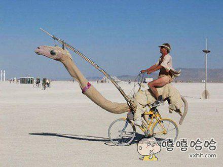 这骆驼看着好像哪里不对劲呢
