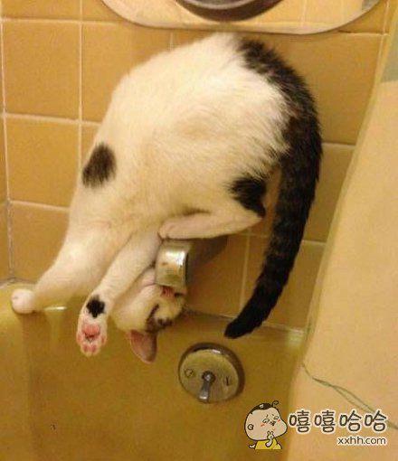 独特的喝水方式!