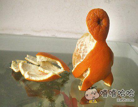 橘子怀孕了。。。。。