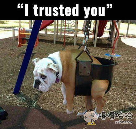 我是如此信任你!被背叛的眼神~~