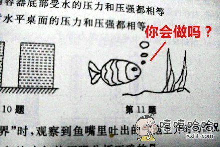 """仿佛听到鱼在问:""""你会做吗?"""""""