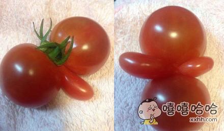这只是一个西红柿!