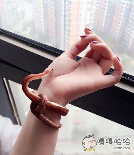 我的新手链怎么样~