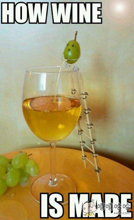 哈哈哈,原来葡萄酒是这样来的