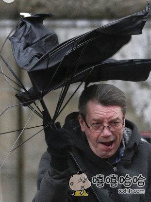 风太大了,都要吹成傻逼了。。。