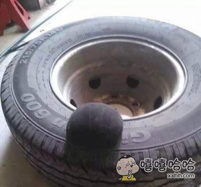 怀孕的轮胎谁这么凶残