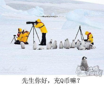 南极考察队日常