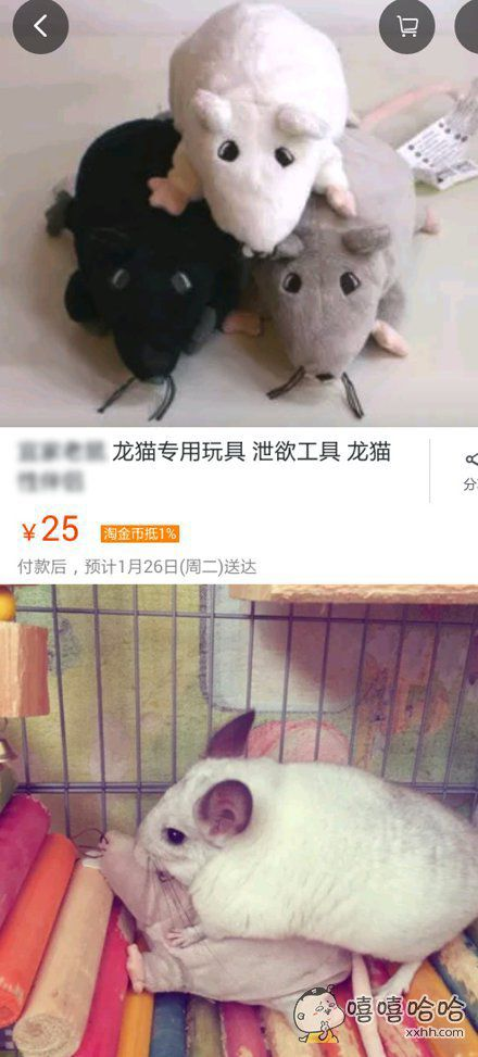 某宝居然还有卖这的,活得不如龙猫。