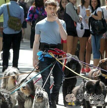 花式遛狗,这也太帅了,可是不怕狗狗突然跑起来吗